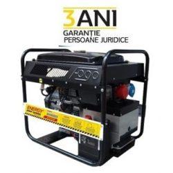 Generator de curent trifazat, ENERGY 15000 TVE